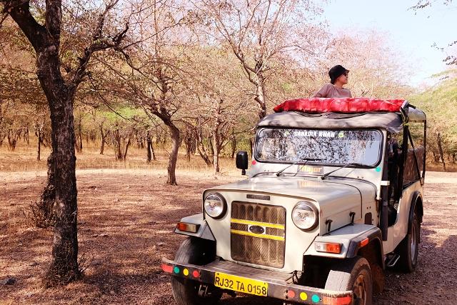mahindra thar, jeep, safari, amer, rajasthan, travel blog, india, incredible india,