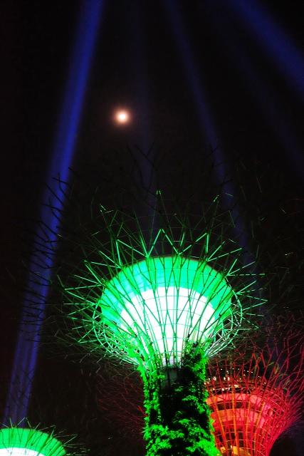 light sabers, supertrees, star wars run, singapore, star wars movie screening, gardens by the bay,