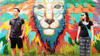 sri lanka, random facts about sri lanka, travel sri lanka, mirissa, lion graffiti