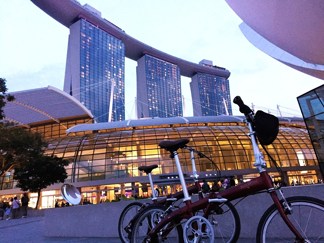 Bicycle Travel Insurance Singapore